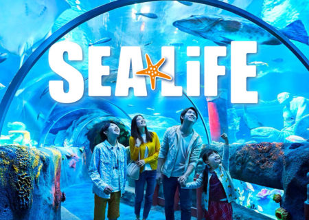 Sea Life (Worldwide)